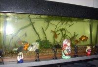 akwarium
