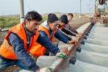 pracownicy w kamizelkach